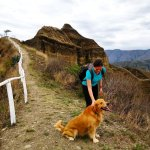 woman dog trail
