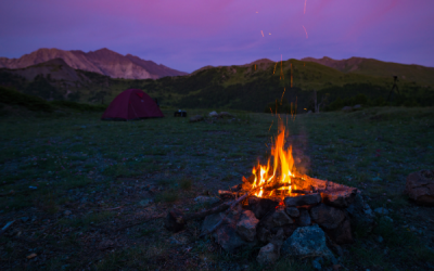 The Ultimate Guide to the FIRE Movement (Financial Independence Retire Early)