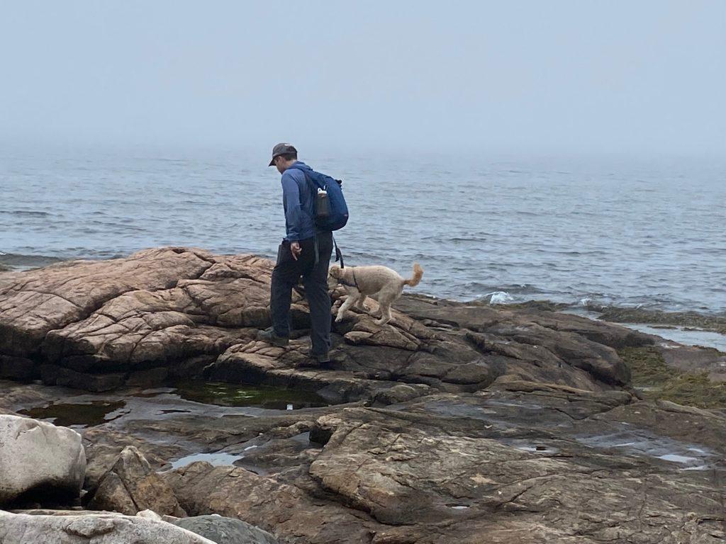 Acadia Rock shoreline ocean